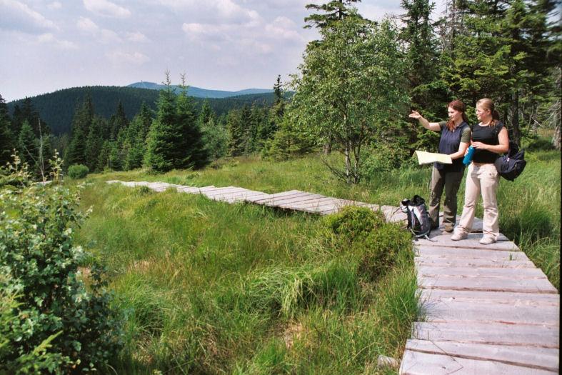 Fotos: Frank Steingass Wanderwege im Harz Hohne Moorstieg