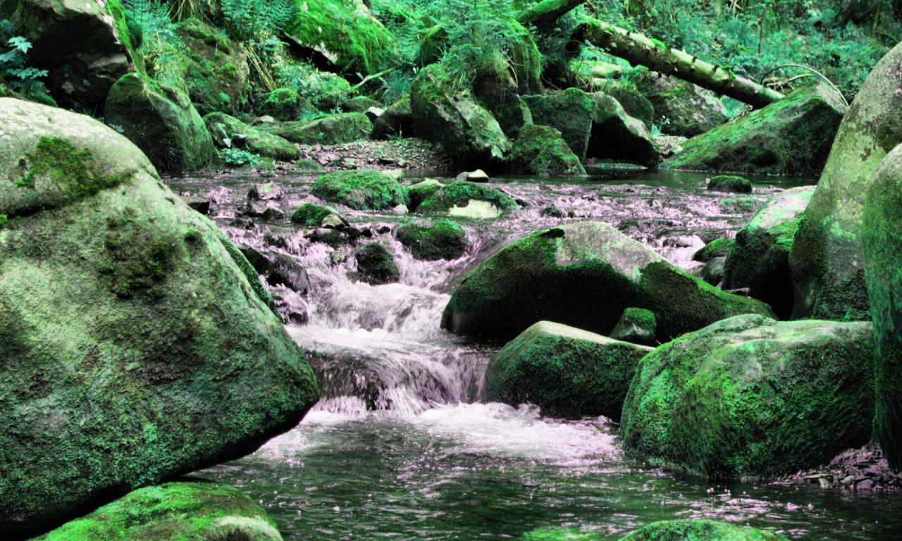 Harzwelten Aktivitäten und Veranstaltungen im Harz