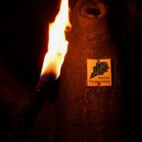 Wandern im Harz Nachtwanderung Fackelwanderung